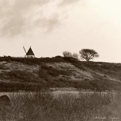 (Pascale Dupuis) Tags: france moulin marais charentemaritime nikond7000 httppascaledupuispiwigocom