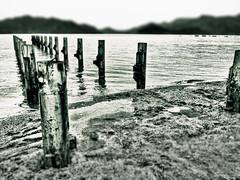 Pier Stilts (Stuart Chard) Tags: beach turkey pier jetty cityscapes what hdr marmaris