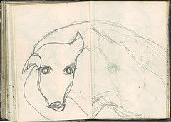 """Will the dog • <a style=""""font-size:0.8em;"""" href=""""http://www.flickr.com/photos/91814165@N02/8423315757/"""" target=""""_blank"""">View on Flickr</a>"""
