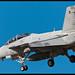 F/A-18F Super Hornet - 165676 / 210 - VFA-106 - US Navy