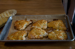 pear and cheddar scones (sassyradish) Tags: cooking baking pear scones kosher sassyradish
