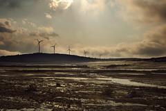 Todos mienten (laororo) Tags: spain dramatic highcontrast windmills granizo castillalamancha molinosdeviento sandragonzalez