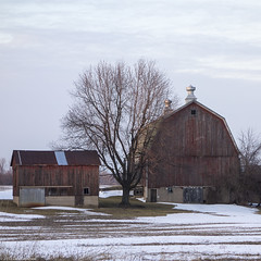 Almont Barn (panodanno) Tags: digital day44 day44365 almontmi 201344 3652013 sonyrx100 365the2013edition 13feb13
