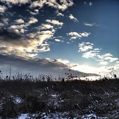 Sunrise / Brachland