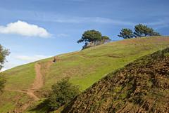 Bernal Heights Park (john weiss) Tags: sanfrancisco california usa geotagged unitedstates bernalheights 18200vr d80 labm geo:lon=12241579413 labcfk geo:lat=3774310881 2012sf5553