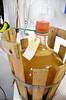 Fermenting (Jacob Damgaard) Tags: food cold hand wine drink champagne cider winery danish sparklingwine jutland applewine jensskovgaard coldhandwinery sparklingapplewine