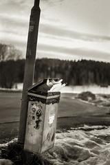 Förvaring (Joakim Berndes) Tags: bw mars snow sepia canon stockholm cc creativecommons recycle snö toning svartvitt samyang 2013 papperskorg canon6d fotose fotosondag jberndes joakimberndes sveu fs130310 forvaring
