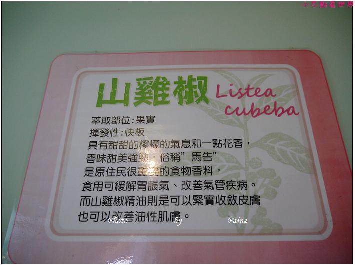 宜蘭員山香草菲菲 (134).JPG