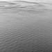 """""""自然抽象之形 Nature Abstract Forms"""" / 寧 Serenity / SML.20130305.7D.26367.BW"""