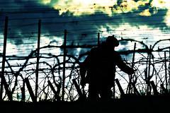 Un labeur d'homme... (ImAges ImprObables) Tags: gimp bio ciel vin nuage commune ceps vigne homme effet drme rhnealpes autichamp labeur biodynamie