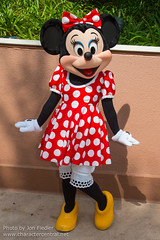 Minnie Mouse (Random)