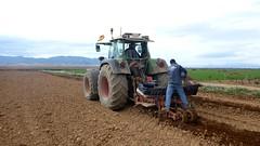 0040VIÑEDOS-plantar-injertos-(22-3-2013)-P1020045 (fotoisiegas) Tags: viticultura viñas viñedos cariñena plantar injertos fotoisiegas lospajeras