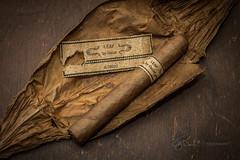 _MG_8234 (J. Daniel Escareno) Tags: cigar cigarleaf cigars leafbyoscar canon canonrebelt3 rebelt3 eos eos1100d