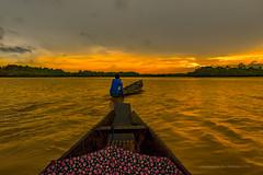 810_6914 The Golden Return (m_dey) Tags: golden return sunset chatla assam india boat boatman