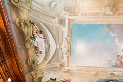 _NIK7044 (EyeTunes) Tags: asheville biltmore northcarolina garden nc hotel mansion museum