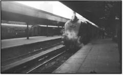 A4 in Glasgow (trafalgar45682) Tags: a4 60024 kingfisher glasgow buchanon street sixties steam