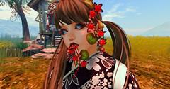 Snapshot () Tags: go secondlife  sljp gacha naminoke barberyumyum kimono