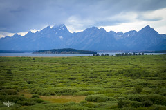 The Tetons 1 (Marisa Sanders Photography) Tags: tetons grandtetons thegrandtetons nps np gtnp grandtetonnationalpark canon canon7d explore outdoors outside gtfoutside gtfoutdoors landscape photography lake