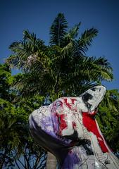 art sous les tropiques (Jack_from_Paris) Tags: l2000435 leica m type 240 10770 leicasummicronm35mmf2asph 11879 dng mode lightroom capture nx2 lr colors couleurs guadeloupe gwada antilles franaises palmier palm tree chien dog damoiseau rhum art