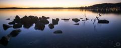 Warners Bay vi (ssoross1) Tags: warnersbay lakemacquarie