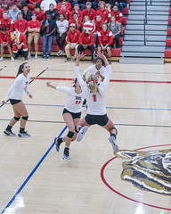 When the setter is also a long jumper (acase1968) Tags: sou volleyball lauren mcgowne southern oregon university raiders leap set nikon d500 nikkor 50mm f18g indoor gym gymnasium low light