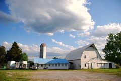 Carolina Dairy Farm (Speed of Light [2]) Tags: nikond40x america northcarolina daysout placesofinterest local photographybychristopherstrickland ruralamerica mooresville carolina nikkorlens zoomlens