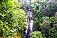 Gzeldere elalesi-Dzce (syhnbykync) Tags: gzeldere elale waterfall dzce trkiye akarsu stream turkey orman forest