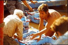 19760800 Rosas Menschen Fischer (4.2) (j.ardin) Tags: spanien espaa spain roses rosas fischer fischhalle arbeit work menatwork travail trabajo menschenbeiderarbeit labor labour job activity labeur praca markt marketplace mercado hafen harbor haven puerto havre port marina processed