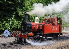 Running Around (Treflyn) Tags: manx isle man steam railway no 12 hutchinson train douglas station