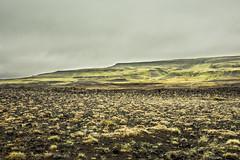 Iceland Landscape (webeagle12) Tags: iceland nikon d7200 europe mountains landscape grass moss lava fields gravel vegetation