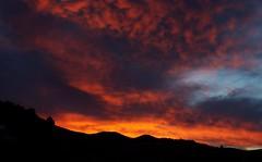 Salida del sol ...   Sunrise ...  (Tricia in Granada, Espaa ....) Tags: salidadelsol sunrise itrabo granada andalucia espaa