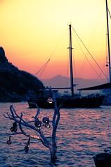 Gmlk, Bodrum, Mula, Trkiye / 2016 (onuruye) Tags: flickr trkiye holiday world travel canon turkey bodrum gumusluk popular view lights tree boat sea sunset photography photooftheday photo