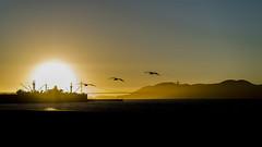sunset Golden Gate (DROSAN DEM) Tags: sunset golden gate san francsico usa california ocaso atardecer sea mar ocena water sky clouds nubes cielo contraluz backlight