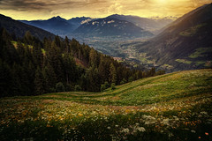 South Tyrol (Chrisnaton) Tags: südtirol viewpoint landscape nature mountains alps hills meadow trees saltusio eveningmood southtyrol meran