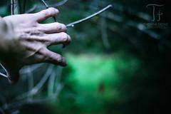 Passage (Thomas TRENZ) Tags: 50mm durchgang found gefunden nikon passage thomastrenz vienna fullframe fx hand iamnikon natur nature vollformat way weg wien