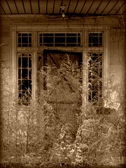 An Abandoned 1830's House:  Edgecombe County, North Carolina (EdgecombePlanter) Tags: abandoned architecture rural dark nc alone moody sad darkness empty southern staircase plantation federal deteriorated plantationhouse mantel southerngothic deterioration greekrevival historicarchitecture rurallandscape enclosedstaircase oncehome