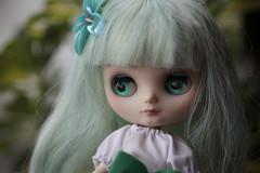 Salvia: My first Middie Custom