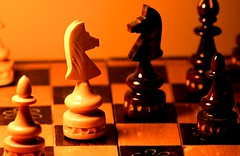 Nose to Nose. Squares #project.flickr #dailyshoot #Explore (Leshaines123) Tags: light colour macro up les contrast flickr close haines squares chess knight 365 pawn projectflickr dailyshoot anawesomeshot me2youphotographylevel1 lsehaines