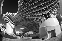 Metropol Parasol Sevilla (AllardSchager.com) Tags: wood city winter urban blackandwhite bw distortion building monochrome lines architecture square wooden sevilla spain nikon december chaos distorted pov curves shapes landmark seville andalucia structure swing fisheye spanish vista organic swinging andalusia cinematic plein controversy chaostheory spanje 2012 fisheyelens zw workflow 2011 distortedreality andalucie d700 largestwoodenstructureintheworld metropolparasol nikond700 nikonfx nikkor16mmf28fisheye allardone niksilverefexpro allard1 laencarnacion fullframepower jurgenmayerhermann lassetasdelaencarnacion allardschagercom encarnacionsmushrooms likeadinosaur
