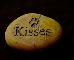 Happy Valentine's Day (taminsea) Tags: rock kisses pawprint happyvalentinesday taminsea
