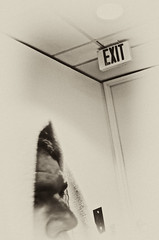Exit (basselal) Tags: bw monochrome sign sepia self head towel gym day46 day46365 60225mm 3652013 365the2013edition 15feb13