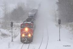CN 2279 Junction City, WI Q11991-13 (missinglink34) Tags: snow wisconsin cn signals snowing gevo stacktrain superiorsub