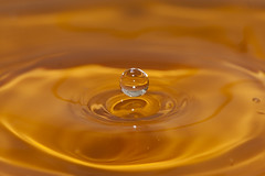 Honey (Djenzen) Tags: water canon jeroen drop splash liquid jansen druppel vloeistof spatten 40d vloeibaar djenzen