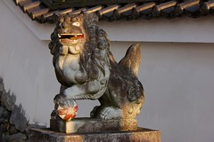 Naka Tenman Shrine 3 (KyotoDreamTrips) Tags: japan kyoto ume plumblossomfestival   aodanibairin joyocity munenagashinno nakatenmanjinja