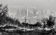 LA on the Edge (rowjimmy76) Tags: city urban bw white black nature skyline outdoors losangeles zoom hiking telephoto socal southerncalifornia sangabrielmountains