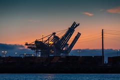 Crane (elzed) Tags: cranes dock machinery marine sea sunset water containers machines gantry dusk streetlights