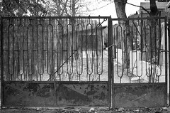 closed! (marios_ch) Tags: door trees sky blackandwhite bw white black tree abandoned rock forest 35mm dark grey nikon rocks branch afternoon cloudy branches budapest ground 5100 nikkor dx 18g d5100 rememberthatmomentlevel1