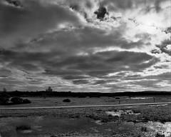 Greenham Common Neg Scan Landscape (Rebecca Sharplin Hughes) Tags: film:iso=400 developer:brand=agfa film:brand=rollei agfar09oneshot developer:name=agfar09oneshot rolleiinfraredir film:name=rolleiinfraredir400 filmdev:recipe=8414 rebeccasharplinhughesmarchportfolio