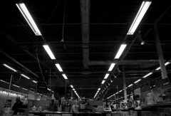 Fluorescent lights (DavidAndersson) Tags: roof white black monochrome lights vanishingpoint sweden fluorescent trollhttan tamron18200f3563 elgiganten verby