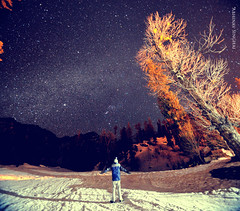 Date With Stars +Milkyway II (Center Cropped ) (Abhinav Singhai) Tags: nightphotography travel trees india fish eye night stars nikon tourist traveller explore orion getty tamron incredible commonwealth himalayas gettyimages highiso himachalpradesh starrynight solangvalley solang indiatravel indiavacation indiatourism gettyvacation himchalpradesh nikond700 tamron1024mm india2010 indiatourist indiatraveller gettyholidays gettytravel gettyindia gettytourist